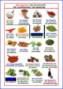 Los condimentos - las especias 1